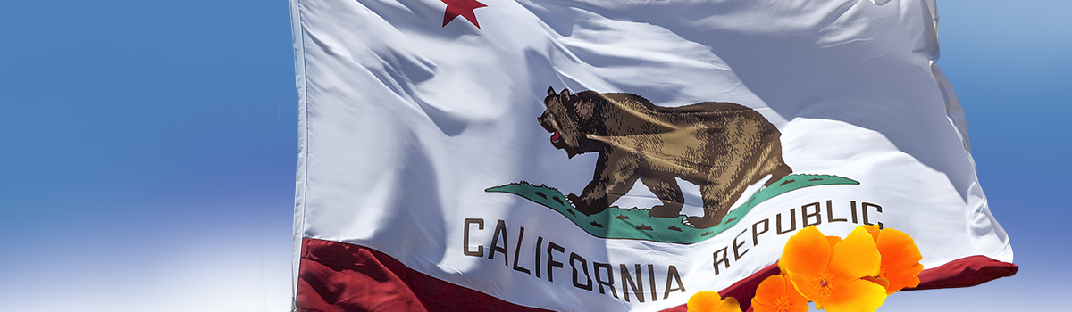 California state flag showing grizzly bear with five pointed star over a red bar and the words California Republic.